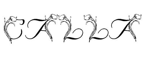 LMS Calla Lily font