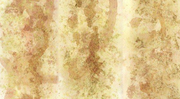 tea panels texture