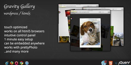 wordpress gravity gallery dzs