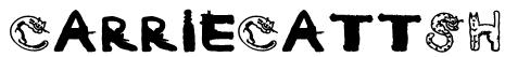 CarrieCattSH Font