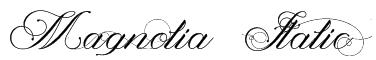 Magnolia  Italic Font