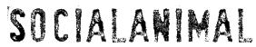 SociaLAnimaL Font