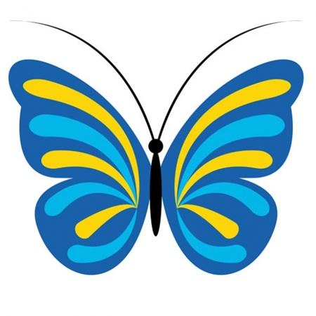 animal,blue,fly,insect,butterfly,vectors,wild,stylish vector