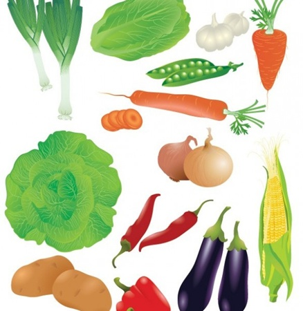 creative,design,download,fruit,graphic,illustrator,original,pumpkin,vector,web,unique,watermelon,vectors,peppers,quality,carrots,stylish,garlic,vegetables,fresh,eggplant,high quality,crisp,corn,potatoes,veggies,peas,lettuce,onions vector