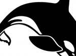 Diving Killer Whale Vector Graphic