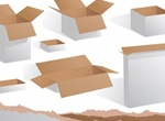 2 Styles Cardboard Boxes Vector Set