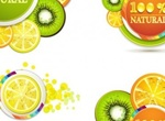 5 Juicy Citrus 100% Natural Vector Slices