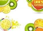 5 Juicy Citrus 100% Natural Vector Slices