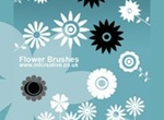 Vector Flower Brushes
