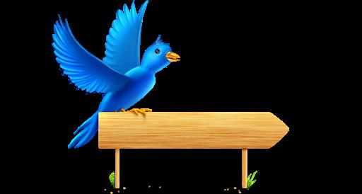 Bird, Sign Icon