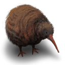 Bird, Flightless, Kiwi Icon