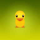 Animal, Duck, Twitter Icon