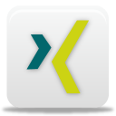 Xing Icon