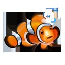 Clown, Fish, Nemo Icon