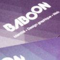 Baboon Creation