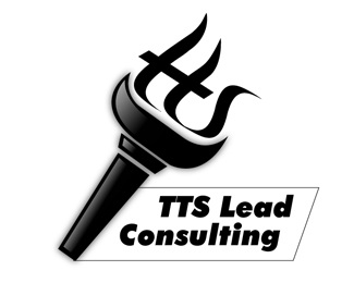 consulting,flame,torch,management,guide logo