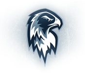 Port Huron Icehawks 3