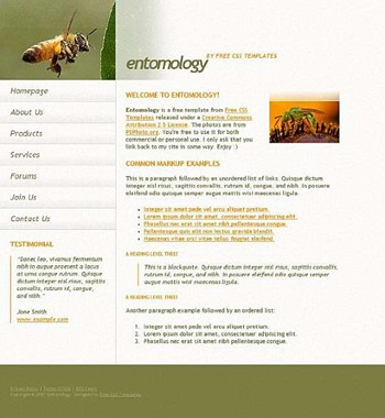 bugs,insects website template