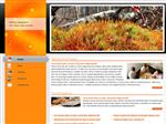 Orange Lights Web Template